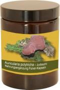120 Auricularia Kombi-Kapseln im Monatstiegel