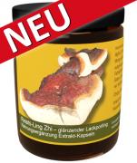 120 Reishi Extrakt-Kapseln im Monatstiegel